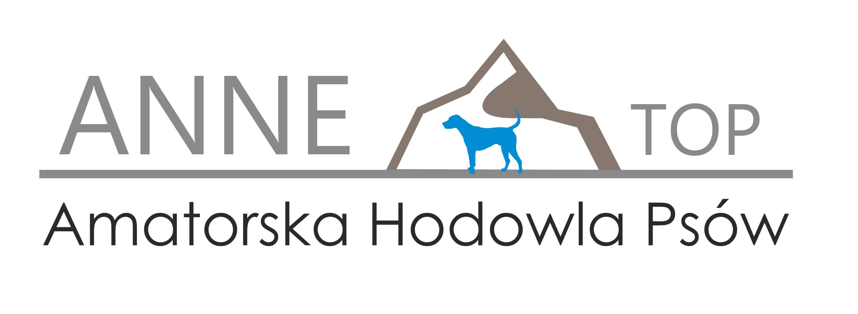 annetop logo